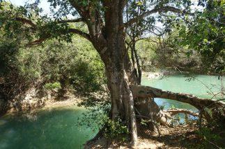 glasklare Flüsse in Bonito