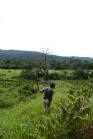 Mit der Machete durch den Dschungel